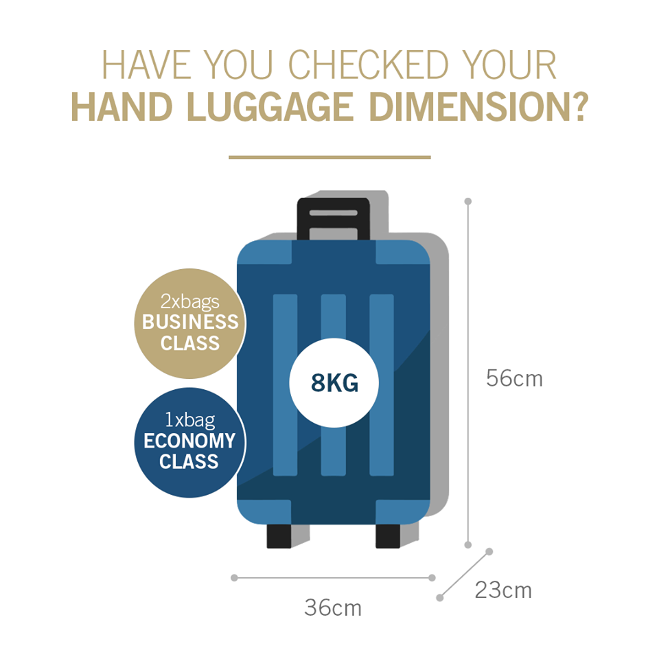 Hand in baggage